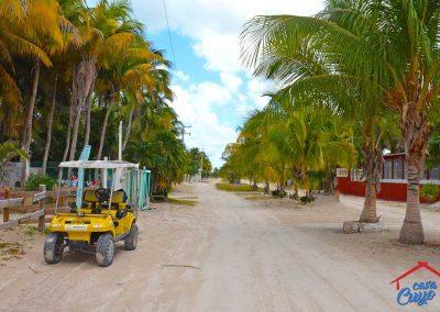 el-cuyo--beach-road