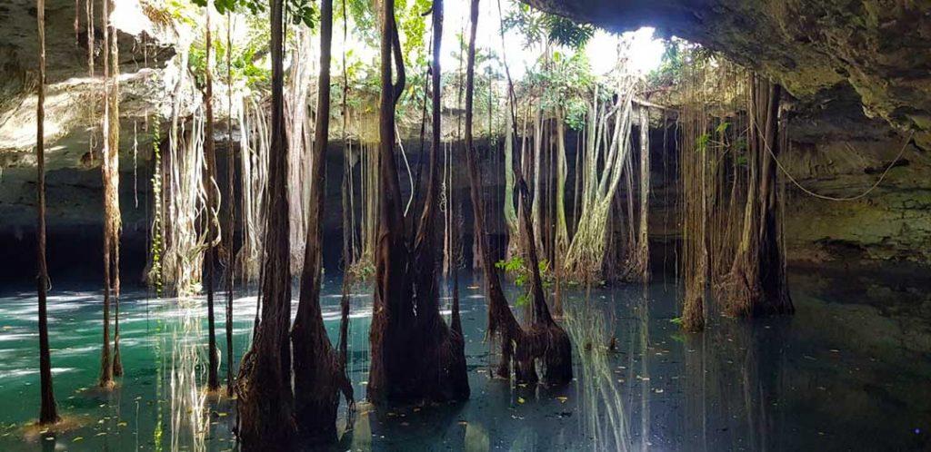 cenote-el-cuyo